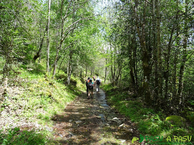 Ruta al Mustallar: Pista hacia Burbia