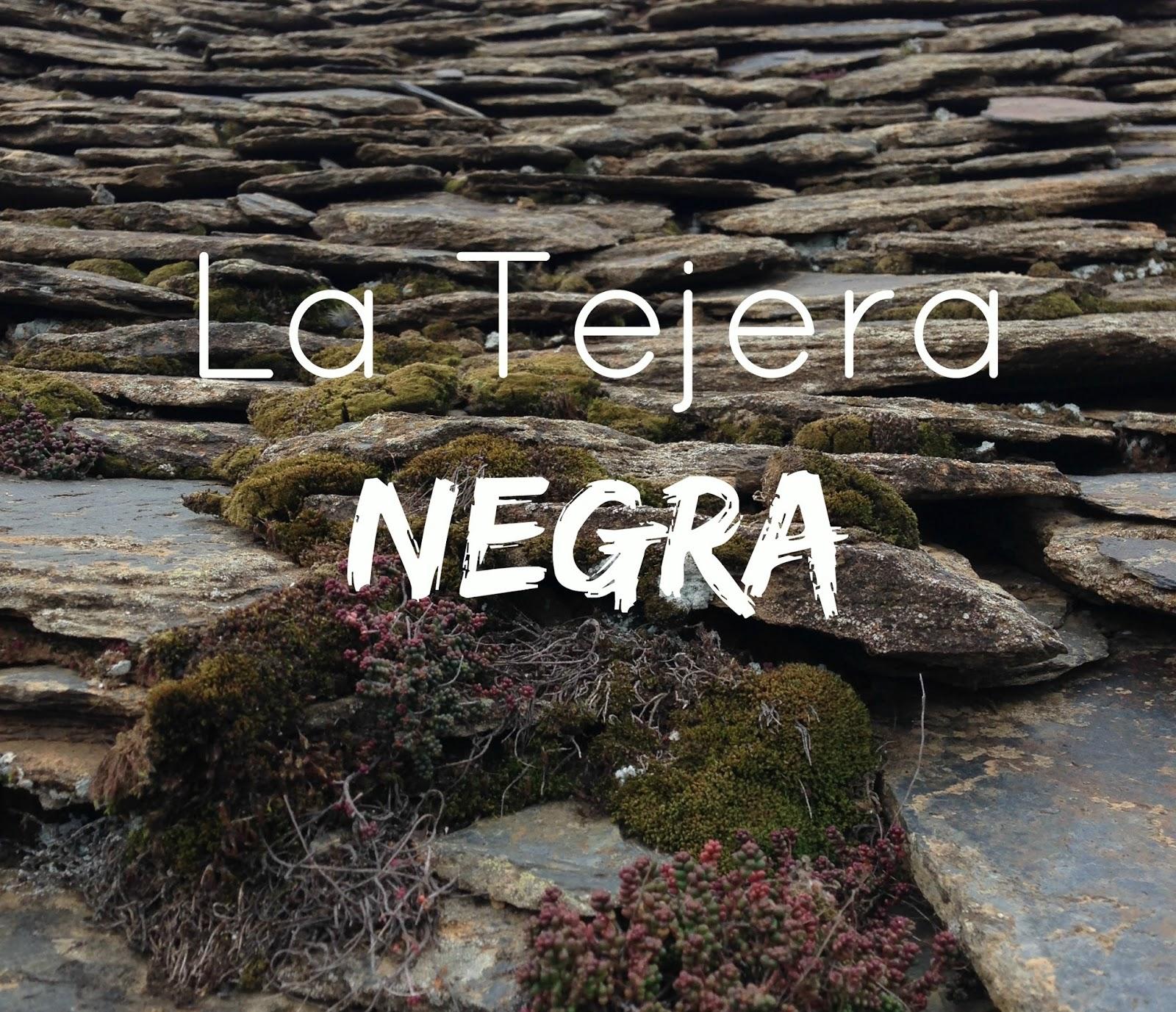http://mediasytintas.blogspot.com/2015/04/la-tejera-negra.html