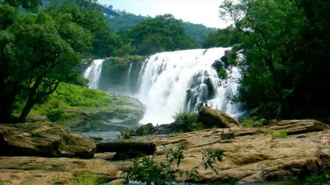 Parambikulam, Thoovanam, Kozhikamuthi & Sholayar Trip