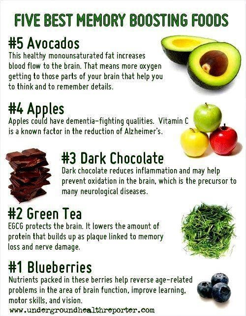 What Foods Are Good For Memory And Focus