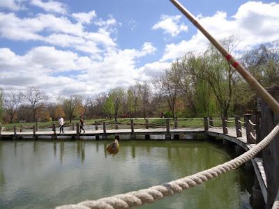 Deanna Rose Childrens Farmstead Fishing Pond