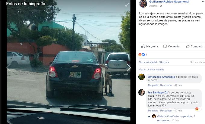 PERRO ES JALADO POR  AUTO- TUXTLA