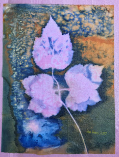 Wet cyanotype, Sue Reno, Image 22