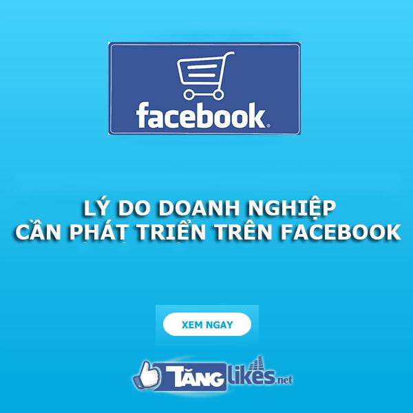 vi sao can phat trien facebook