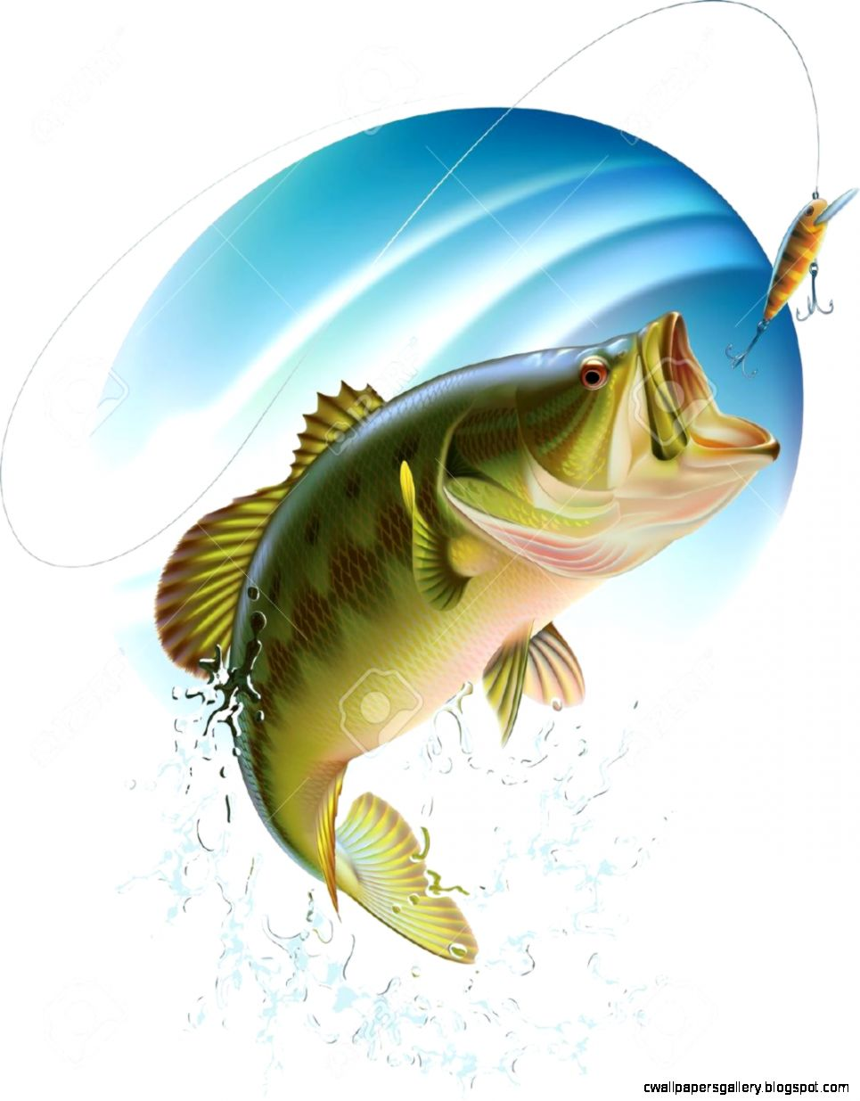 Largemouth Bass Jumping Out Water Pictures