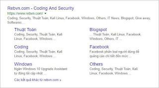 Cách để Google lập chỉ mục và tạo site links cho trang tìm kiếm label