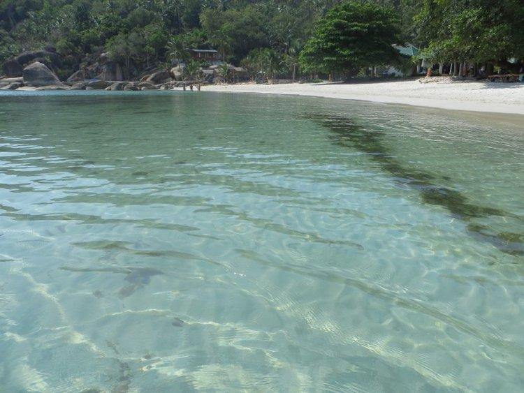 Море Самуи с прозрачной водой