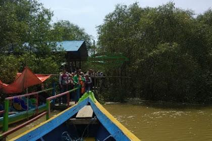 Transformasi Desa Nelayan Pangkah Wetan Gresik, Menjadi Destinasi Wisata Mangrove