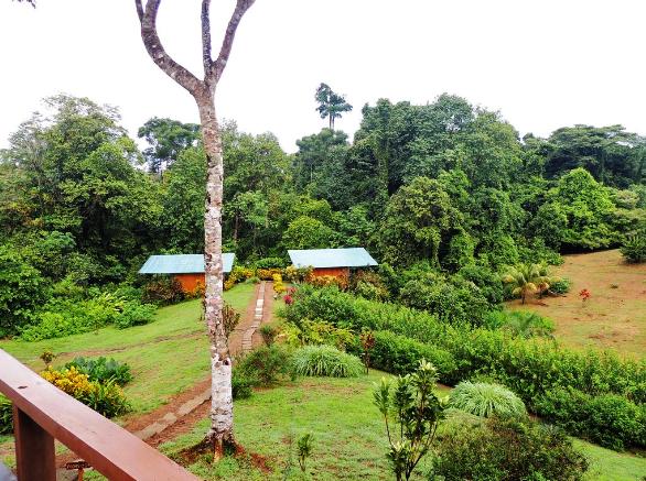 Alojamiento en Parque Nacional de Corcovado