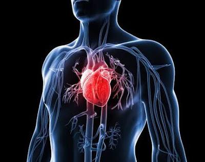 7 Tips Mencegah Dan Cara Mengatasi Penyakit Jantung