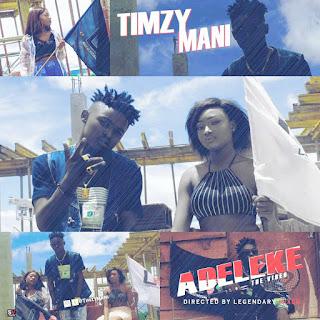 AUDIO + VIDEO : TIMZ MANI - ADELEKE