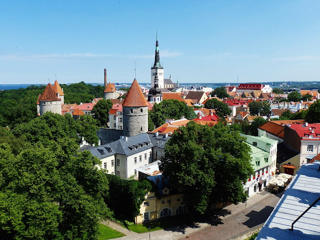 Zielony, piękny Tallinn (lipiec 2014)