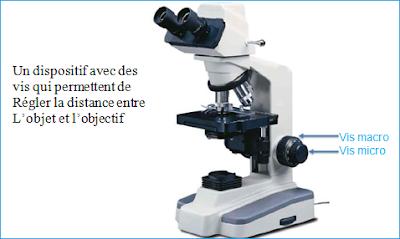 Oculaire microscope