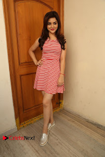 Ragini Nandwani Pictures at Siddhardha Movie Interview    ~ Bollywood and South Indian Cinema Actress Exclusive Picture Galleries