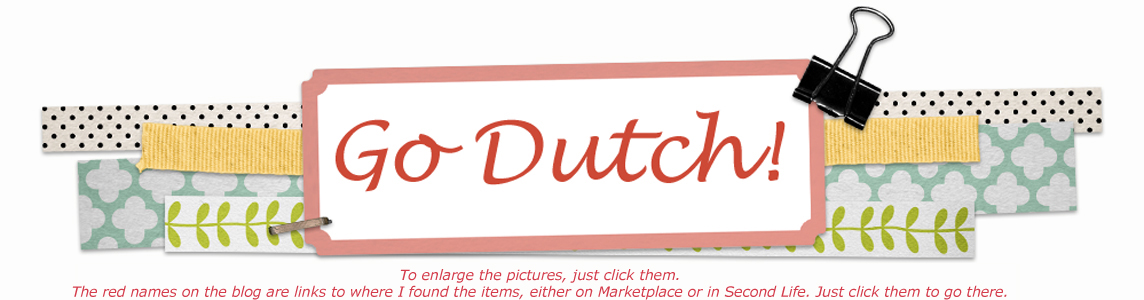 GO DUTCH !