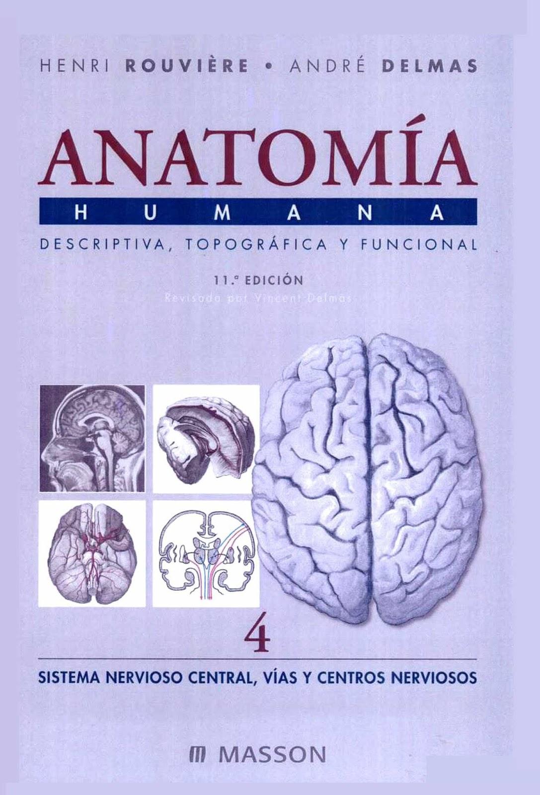 Anatomía Humana. Tomo 4: Sistema nervioso central, 11va Edición – Henri Rouvière