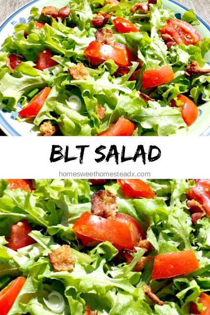 BLT Salad - Home Sweet Homestead