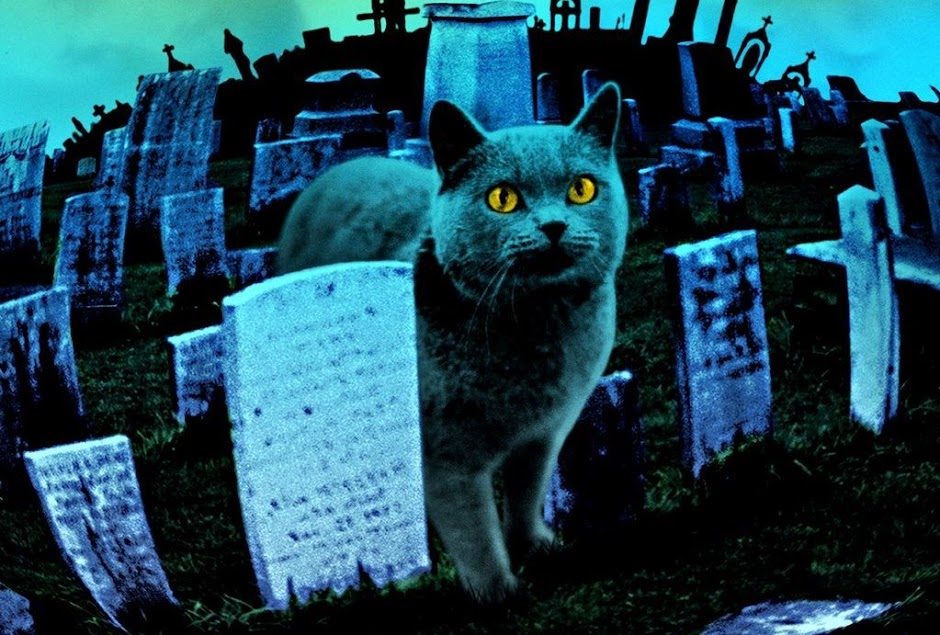 """Cemitério Maldito"""""""