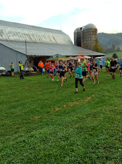 driftless marathon Wisconsin trail race