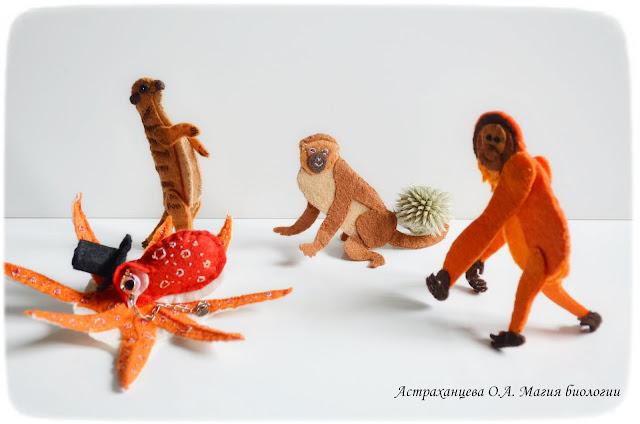 palchikovyj-teatr-martyshka-orangutan-osminog-surikat-jekzozoohorija