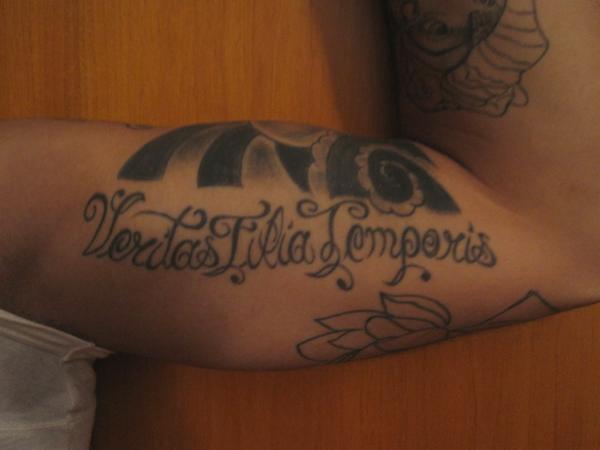 Veritas Filia Temporis and Shakespeare