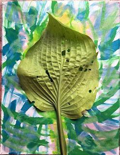 Solarfast prints_Sue Reno_Image 57