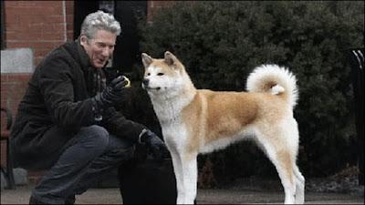 Hachikō The Faithful Dog - a National Symbol