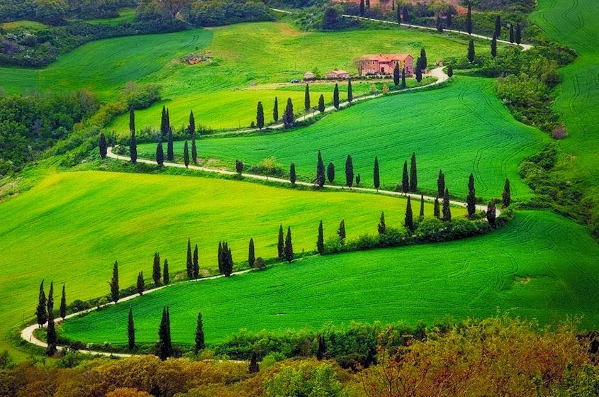 Image result for tuscany road
