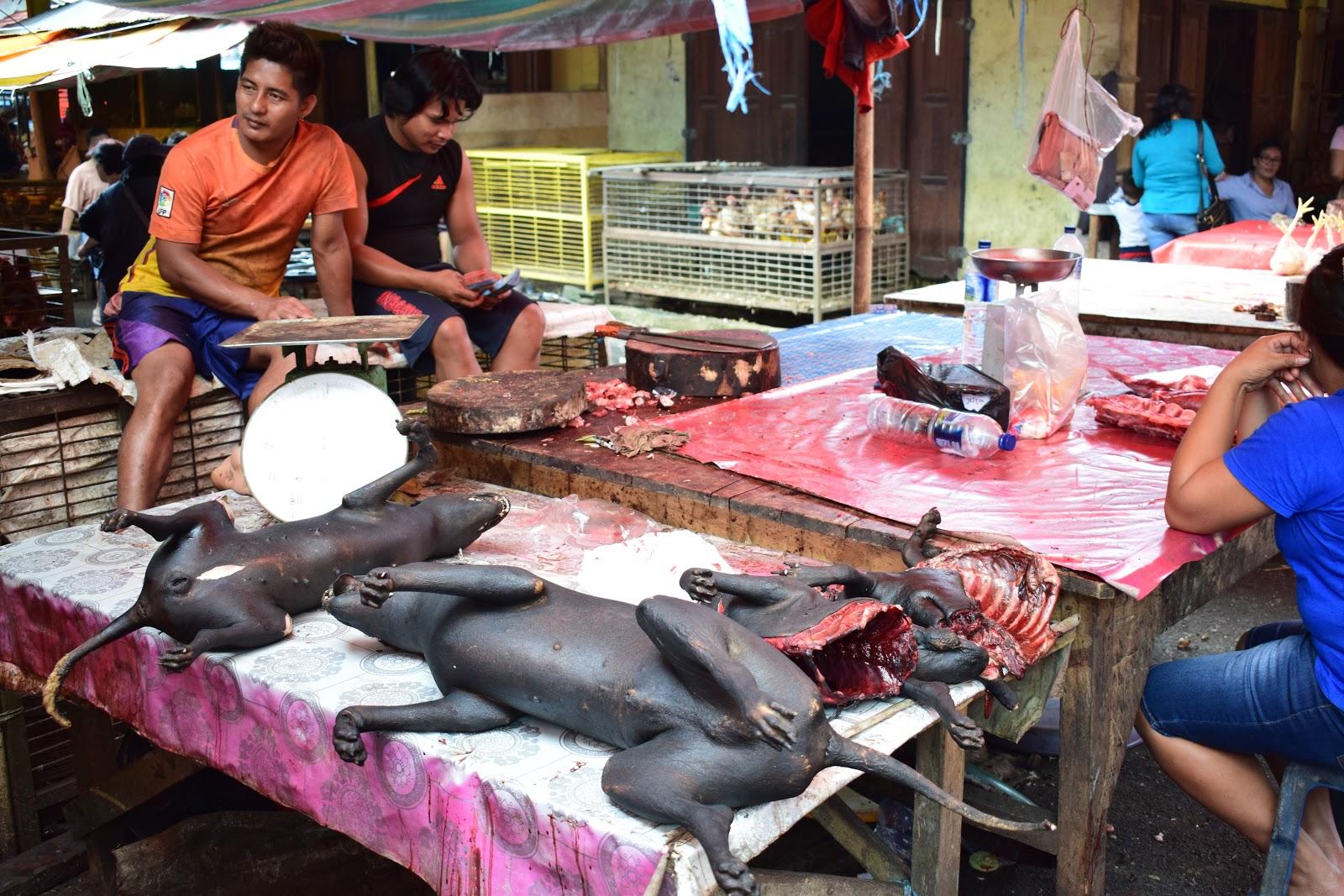anjing bakar di pasar beriman