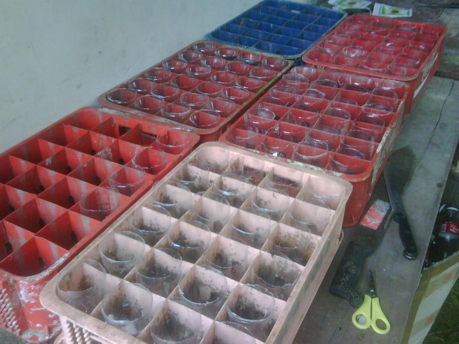Huerta Ecol Gica Con Materiales Reciclados ~ Como Hacer Una Huerta Ecologica