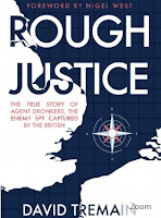 Rough Justice by Davis Tremaine