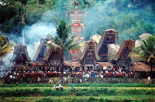 Image result for tana toraja