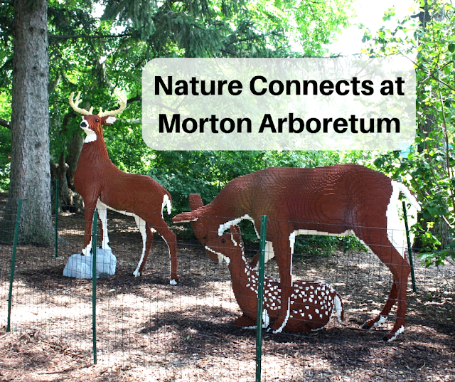 Nature Connects® Featuring Nature Inspired Lego® Art by Sean Kenney Returns to Morton Arboretum May 24