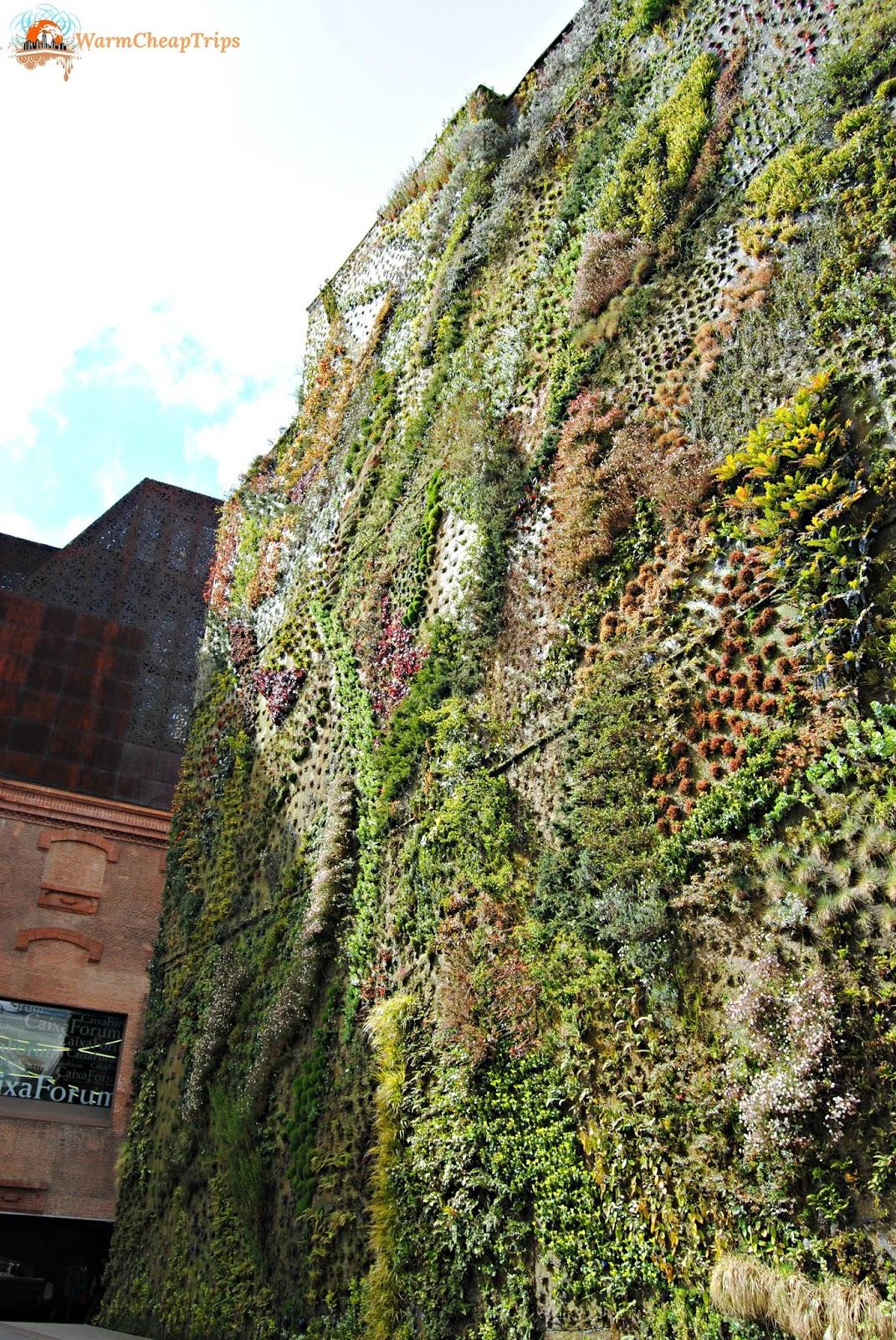 Madrid in due giorni pi uno warmcheaptrips - Giardino verticale madrid ...