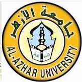 PCI Muhammadiyah Mesir Membentuk Fasilitator CAMABA Timur Tengah