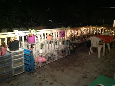 Porch Garden using recycled furniture and multi colored containers - lit up at night