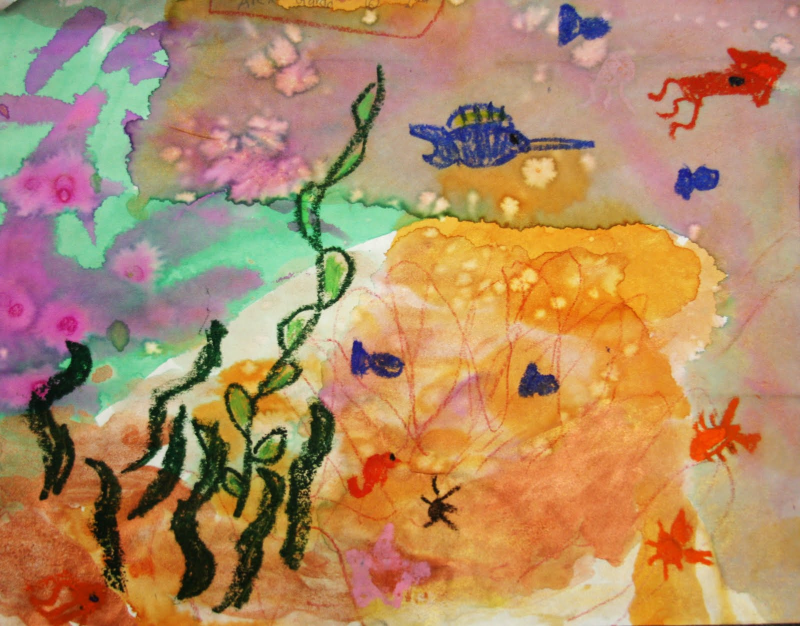 Briargrove Elementary Art Page Coral Reef