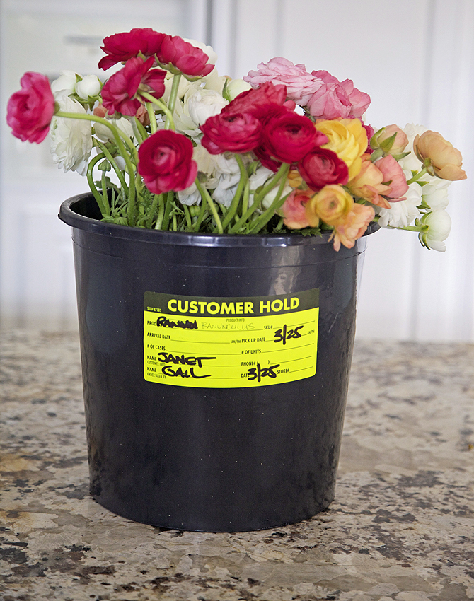 How to make a flower pot bucket container