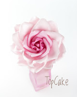 Sokerimassaruusu, Ruusu, Sugar Rousse