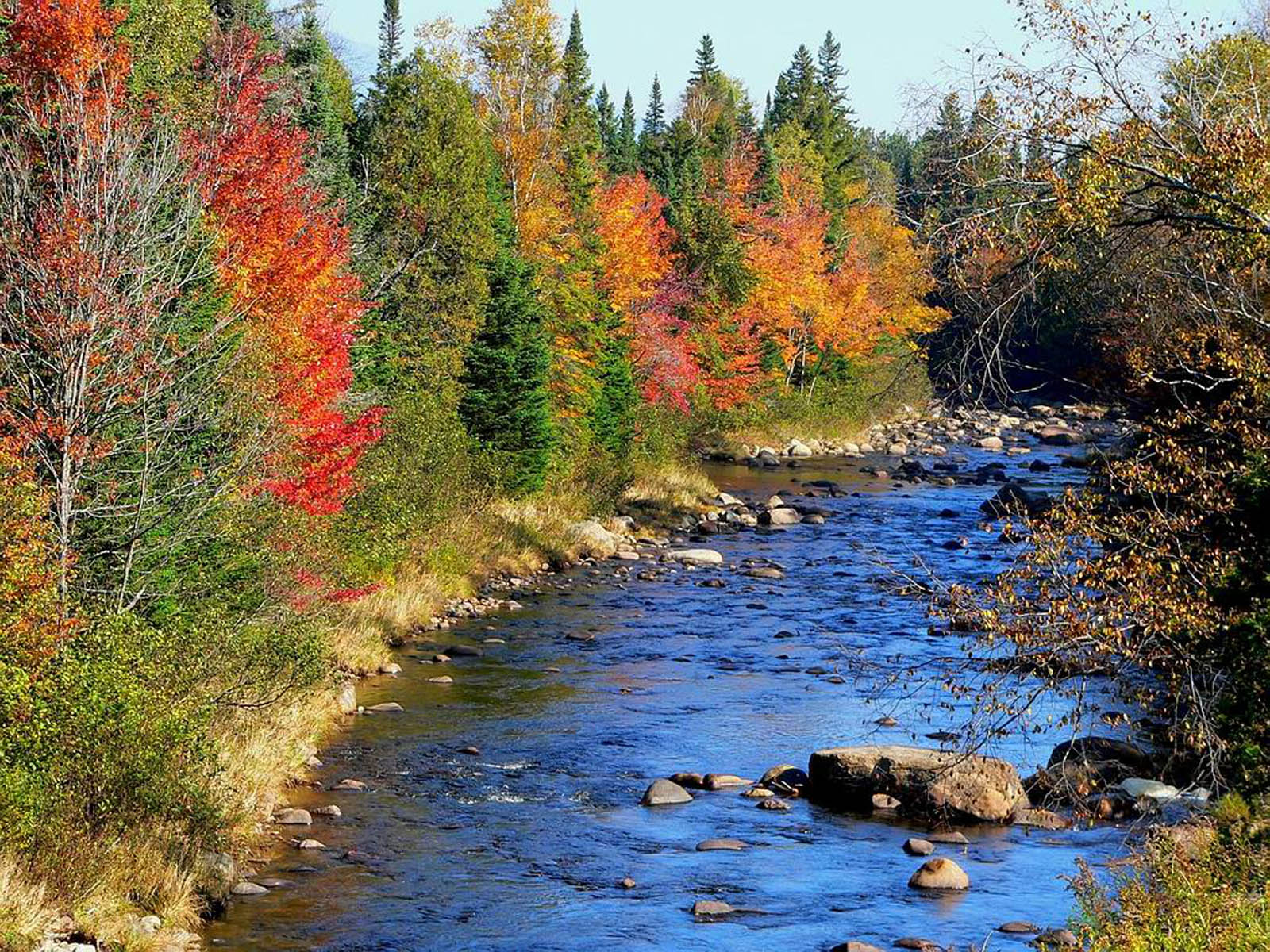wallpapers: River Wallpapers