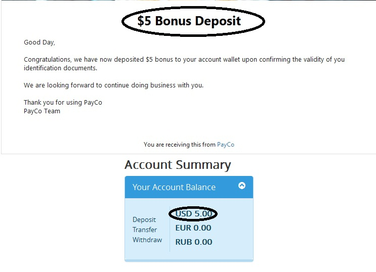 payco e-payment