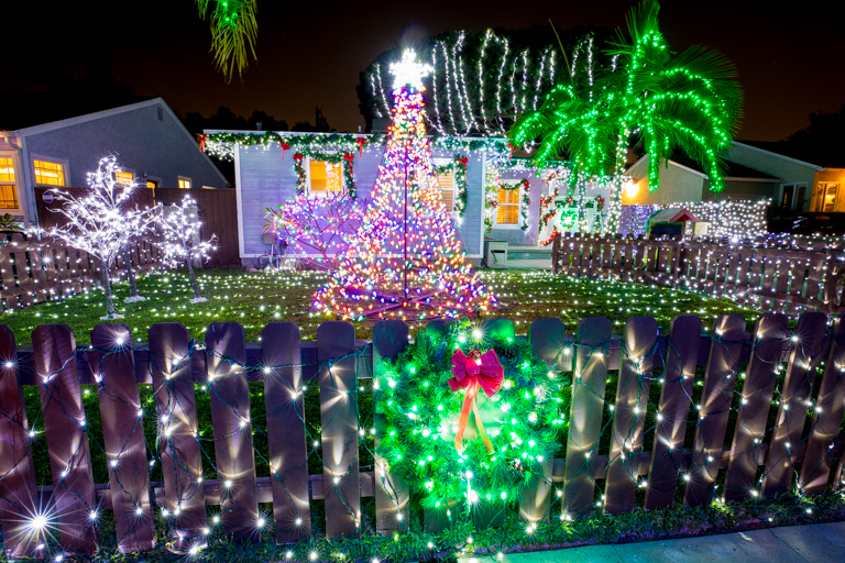 tales of the flowers 2017 flowers family christmas lights