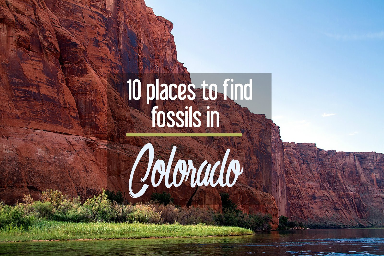 Calling All Paleontologists 10 Places To Go Fossil Hunting In Colorado Cosmos Mariners Destination Unknown Colorado pageant is held in the spring at the ellie caulkins opera house in the denver performing arts co. places to go fossil hunting in colorado