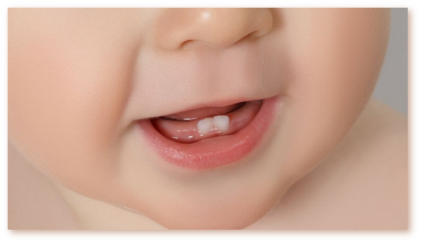 Eruptia dentara la bebelusi