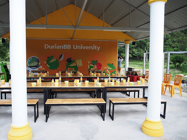 DurianBB University Lecture Hall Campus