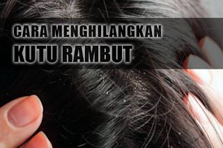 Cara Menghilangkan Kutu Rambut Dengan Cepat Dalam 1 Hari