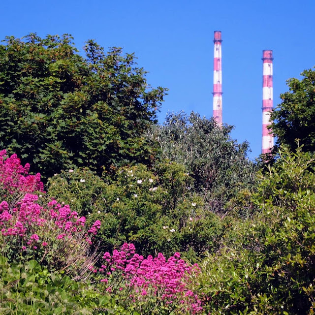 Dublin City Walks: See the Poolbeg towers no a hike from Sandymount to Poolbeg lighthouse.