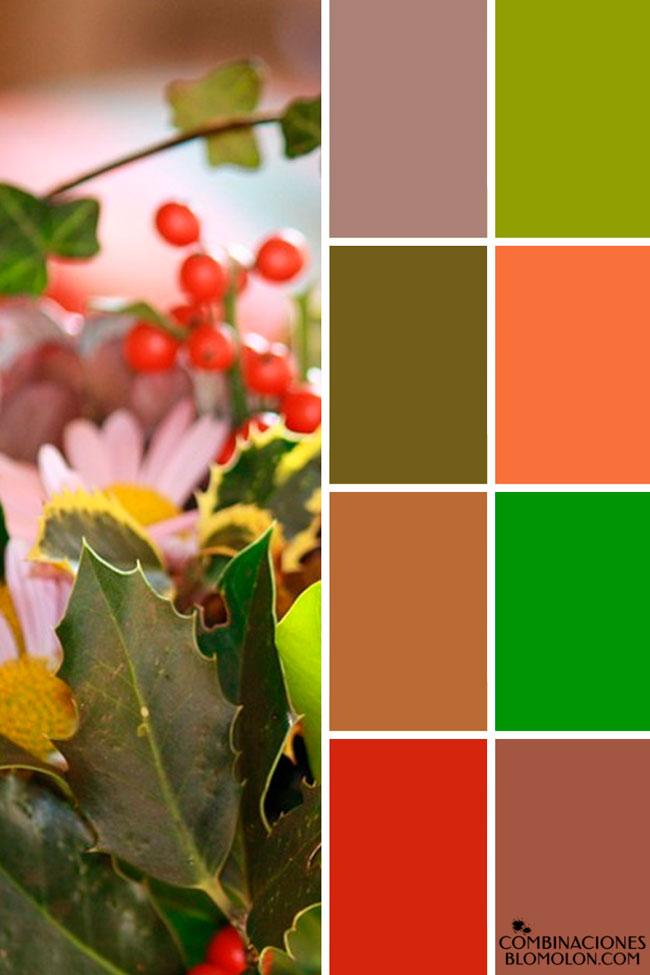 combinacion_de_colores_variedad_4