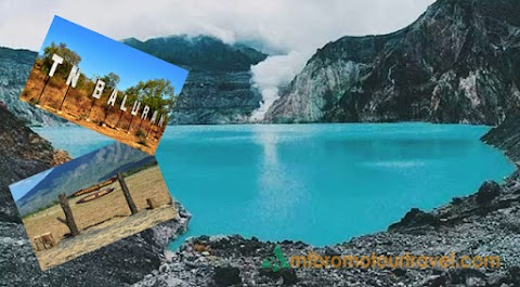 Ijen Crater Tour and Baluran Park 3 days 2 nights