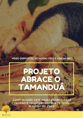 projeto abrace o tamanduá, waita, ong, tamanduá, tamanduá mirim, animais, conservação ambiental, preservar os animais, natureza, sustentabilidade, crowdfunding, monitoramento, ibama, atropelamento, animais selvagens